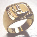 Vulcan Star Trek  Ring